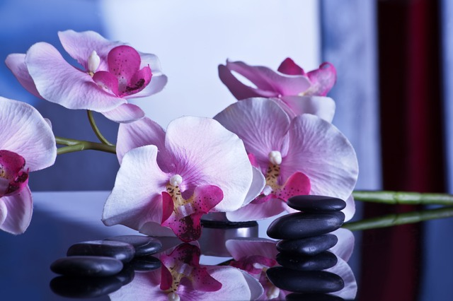 orchids-massage