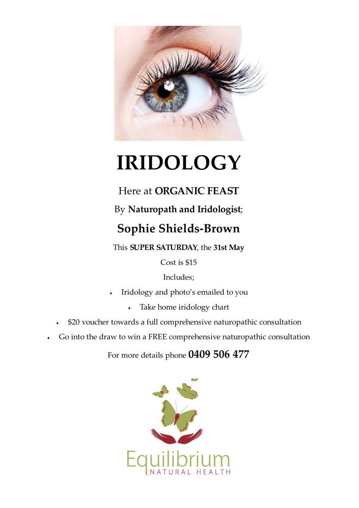 Iridology poster