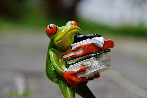 stressed-frog